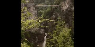 circuladô de fulô - aguas mansas