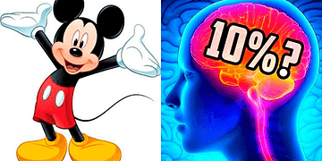 Lies and Myths That You Still Believe To Be True - the best top 10