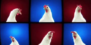 Chicken song - [Geco Remix]